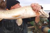 Delta Dunării: Festivalul Borşului de Pește și Cupa Deltei la Știucă
