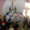 Duminica Floriilor pentru credincioșii catolici