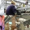 Locuri de muncă în Europa