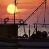 Pescador turcesc reținut cu focuri de armă pe Marea Neagră