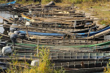 A apărut Ordinul privind prohibiţia pescuitului în anul 2014
