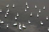 Americanii descoperă Delta Dunării în The New York Times