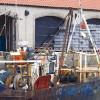 Încep lucrările la Bursa de pește de la Tulcea, un proiect controversat de-a lungul timpului