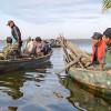 Noutățile anului 2015 la pescuit: priponul, setca, Golful Musura, Sf. Gheorghe, Periteașca, Perișor, Dunărea veche