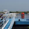 Flag Delta Dunării: peste o sută de contracte, 96% procent de absorbție