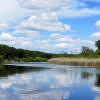 Guvernul României: 2.405 mii lei pentru înlăturarea efectelor produse de secetă în Delta Dunării