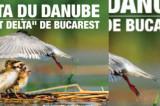 ICR Paris: Delta Dunării şi « Mica Deltă » a Bucureştiului