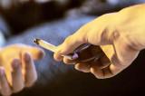 Sulina: cadru militar cultiva cannabis