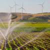 Județul Tulcea:s-au deschis liniile de finanțare prin Programul Național de Dezvoltare Rurală