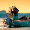 Proiectul de Lege privind aprobarea OUG pentru pescuit şi acvacultură a fost votat din nou după un an de blocaj