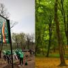 Silvicultori din România și Republica Moldova au marcat Centenarul Marii Uniri prin plantarea unei păduri memoriale pe malurile Prutului