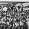 IN MEMORIAM: Genocidul armean, istoria și suferințele unui neam de creștini care n-a încetat să creadă niciodată