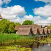 A fost promulgată Legea care acordă reducerea cu 50% a taxelor pentru salubrizare, energie, apă, gaze pentru localnicii din Delta Dunării