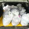 Peste 300 kg de peşte fără documente legale, confiscate de poliţiştii de frontieră