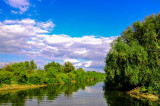 Locuitorii din Delta Dunării solicită subvenție pentru  autovehiculele care folosesc bacurile pentru traversarea Dunării