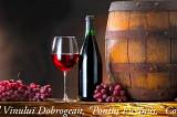"""Începe Festivalul Vinului Dobrogean """"Pontus Euxinus"""" în Piața Ovidiu din Constanța"""