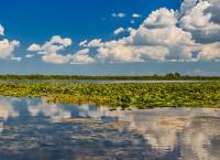 A fost promulgată în cele din urmă, Legea privind modificarea şi completarea unor acte normative din domeniul protecţiei mediului.