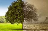 """La Madrid a început Conferința ONU privind schimbările climatice: """"O singură planetă, un plan verde de tranziție"""""""