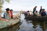 ARBDD va stabili până pe 10 februarie cotele de pescuit