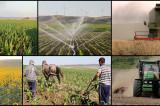 PNL: prioritățile din domeniul agriculturii și industriei alimentare sunt industrializarea, susținerea procesării și creșterea accesului la piață al produselor românești