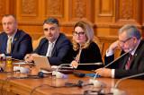 """Deputat Radu Anișoara: Doamna Vasilescu și-a propus o rată de ocupare a muncii de 70%, Programul """"Garanția pentru tineret"""" şi Programul """"Primul salariu"""""""
