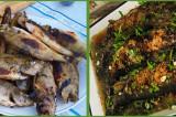 UNESCO a ales rețeta saramurii de pește din Delta Dunării ca fiind reprezentativă în lume