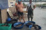 Braconaj la calcan: Peste 200 kg de calcan confiscate de poliţiştii de frontieră