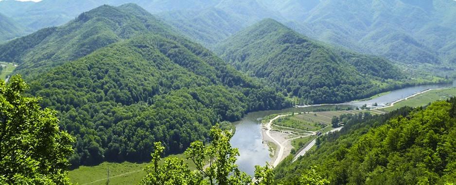 UNESCO atenționează  România pentru felul în care sunt exploatate zonele pădurilor de fag înscrise în Patrimoniul mondial