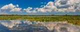 Plan urgent de salvare a turismului din Delta Dunării, măsuri economice necesare pentru operatorii din turism pentru a nu intra in faliment