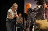 Un spectacol gratuit și un weekend cu trei comedii,  la Teatrul de Stat Constanța