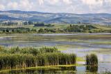 Ziua mondială a Zonelor Umede. Zonele umede şi biodiversitatea reprezintă tema anului 2020