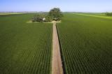 Fermierii Români solicită sprijin și propun măsuri concrete pentru susţinerea agriculturii în perioada  pandemiei de coronavirus.