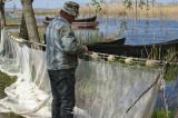 ARBDD are în vedere prelungirea termenului de valabilitate a tuturor actelor de reglementare emise în anul 2019, pentru activitatea de pescuit comercial în perimetrul R.B.D.D