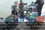 Braconaj în Delta Dunării: Comisarii ARBDD au confiscat peste 260 de kilograme de pește și cca. 1500 de plasă monofilament