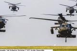 Militari ai Batalionului 4-3 AHB, structură de elicoptere a forțelor terestre americane, participă de Sf. Gherghe la un exercițiu deasupra Dobrogei, de asalt asupra unui obiectiv în teren (în apropierea Cetății Enisala)