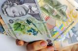 Leul românesc ar putea deveni moneda unică de plată pe teritoriul României. Cursul de referinţă al leului faţă de moneda străină de referinţă nu poate fi mai mare decât cursul BNR