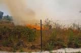 Incendiu în cimitirul din Beidaud pe cca 5000 de mp