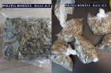 Trei bărbați au fost reținuți pentru trafic de droguri de mare risc (MDMA, cocaină, cannabis, amfetamină)