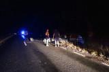 Accident rutier în zona localității Niculițel