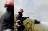 Incendiu de vegetație la ieșirea din municipiul Tulcea spre Cataloi