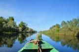 Bărbat mort pe un canal din Delta Dunării după ce a întrat cu ambarcațiunea în vegetația de pe margine