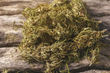 Flagrant cu Cannabis la Mangalia