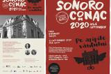 """Turneul SoNoRo Conac 2020 """"Pe aripile vântului"""" se încheie la Casa Avramide din Tulcea cu două concerte"""