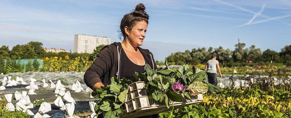 """Ziua Internațională a Femeii din mediul rural: """"Construirea rezistenței femeilor din mediul rural pe fondul COVID-19""""(ONU)"""