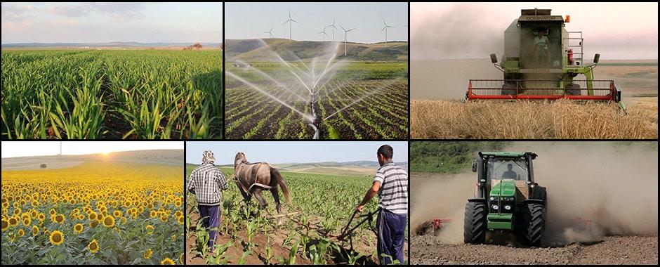 Femeie intalnire pentru agricultor)