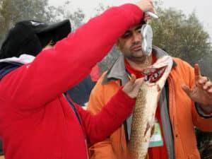 pescar3