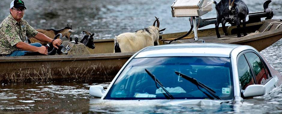 inundatii1