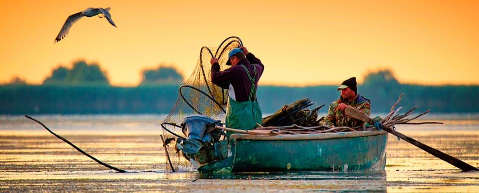 pescari02